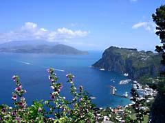 DScapri.jpg Flora Landscapes - Water Flora - Flower Blossoms blue italy mediterranean ocean mediteranean ocean