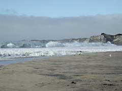 RJW09anoNuevo.jpg Landscapes - Water beach sand coast pacific ocean photography
