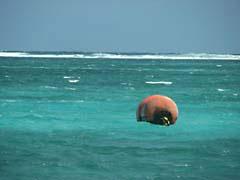 RJW53Belize.jpg Landscapes - Water belize caribbean latin america photography surf