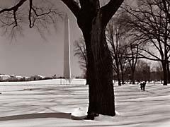WWMdcWinter.jpg snow white black and white bw grayscale black & white Landscapes - Urban